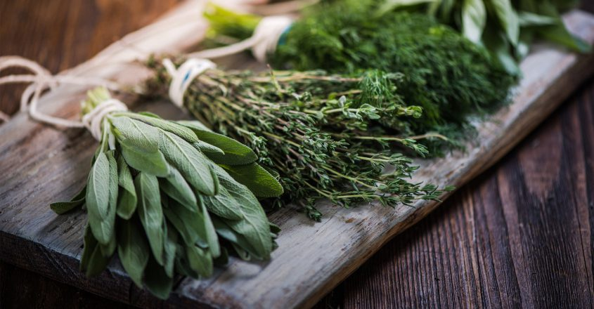 cours_nutrition_phytotherapie